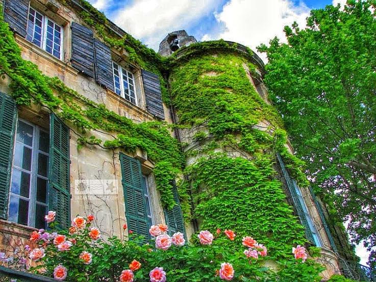 Provence encore une fois: Fontvieille
