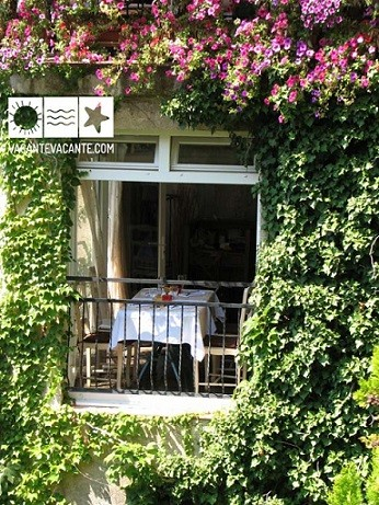 In bucataria Provence-ului (1)