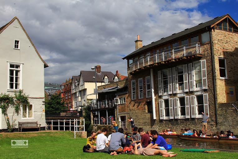 Cambridge, studenti