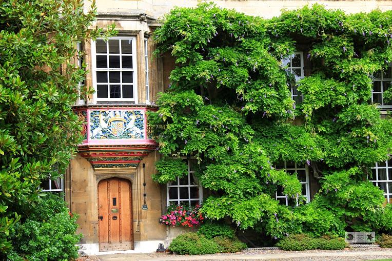 plimbare Cambridge