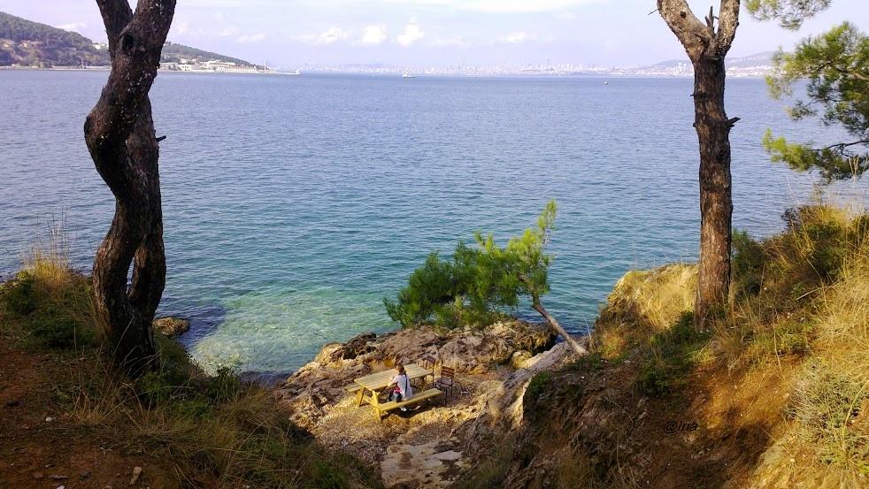 insulele printului, Buyukada