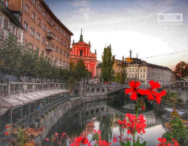 Slovenia:I'll be back