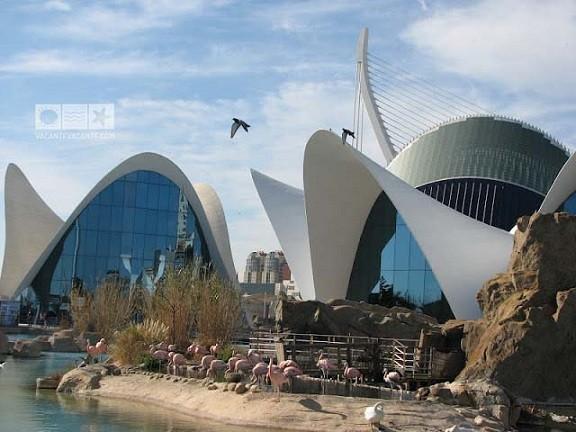 Valencia. Inapoi in viitor – Ciudad de las Artes y las Ciencias