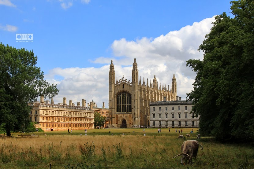 cambridge, king s college