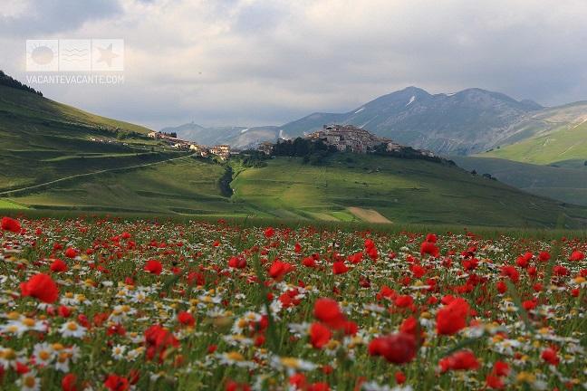 Salutări din Umbria!