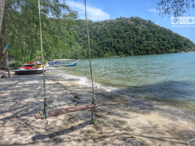 penang, monkey island