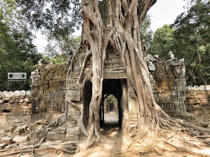templul preah khan, angkor