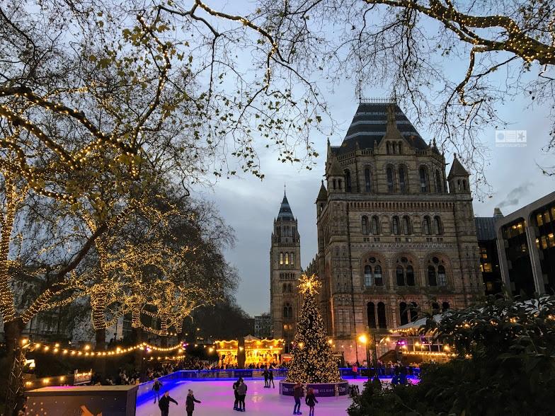 Jurnal de Londra: biblioteci,chirii și o rețetă